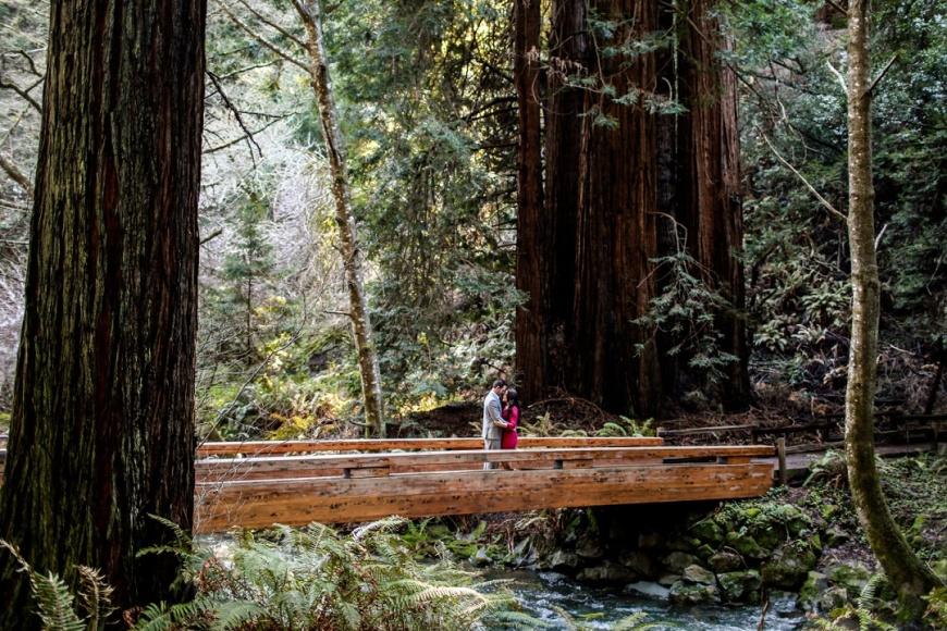 Muir Woods Engagement - Kate's Captures_0014.jpg