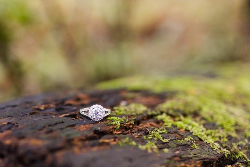 Muir Woods Engagement - Kate's Captures_0016.jpg