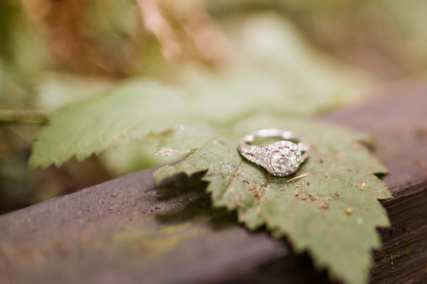 Muir Woods Engagement - Kate's Captures_0027.jpg