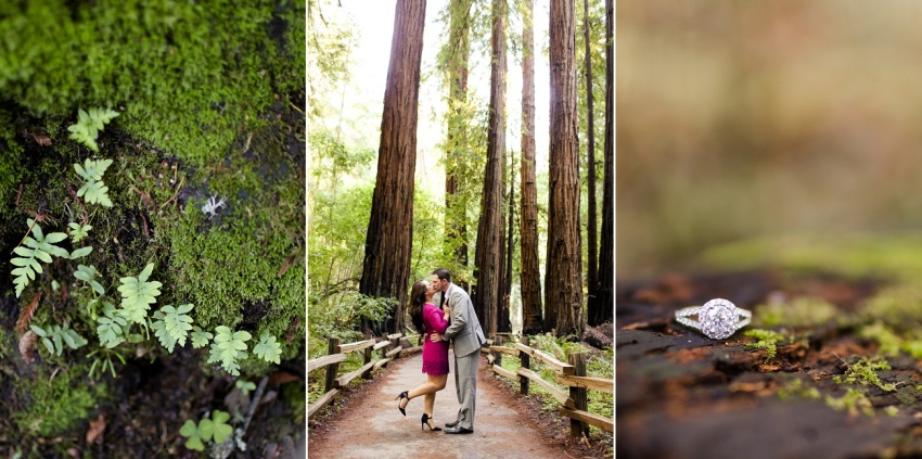 Muir Woods Engagement - Kate's Captures_0043