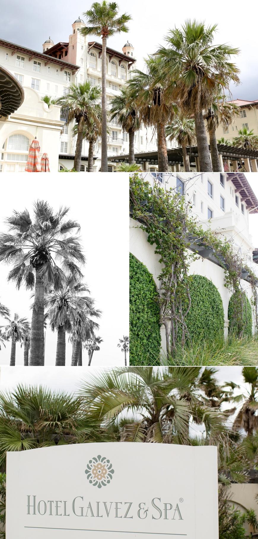 Hotel-Galvez-Wedding_0100.jpg