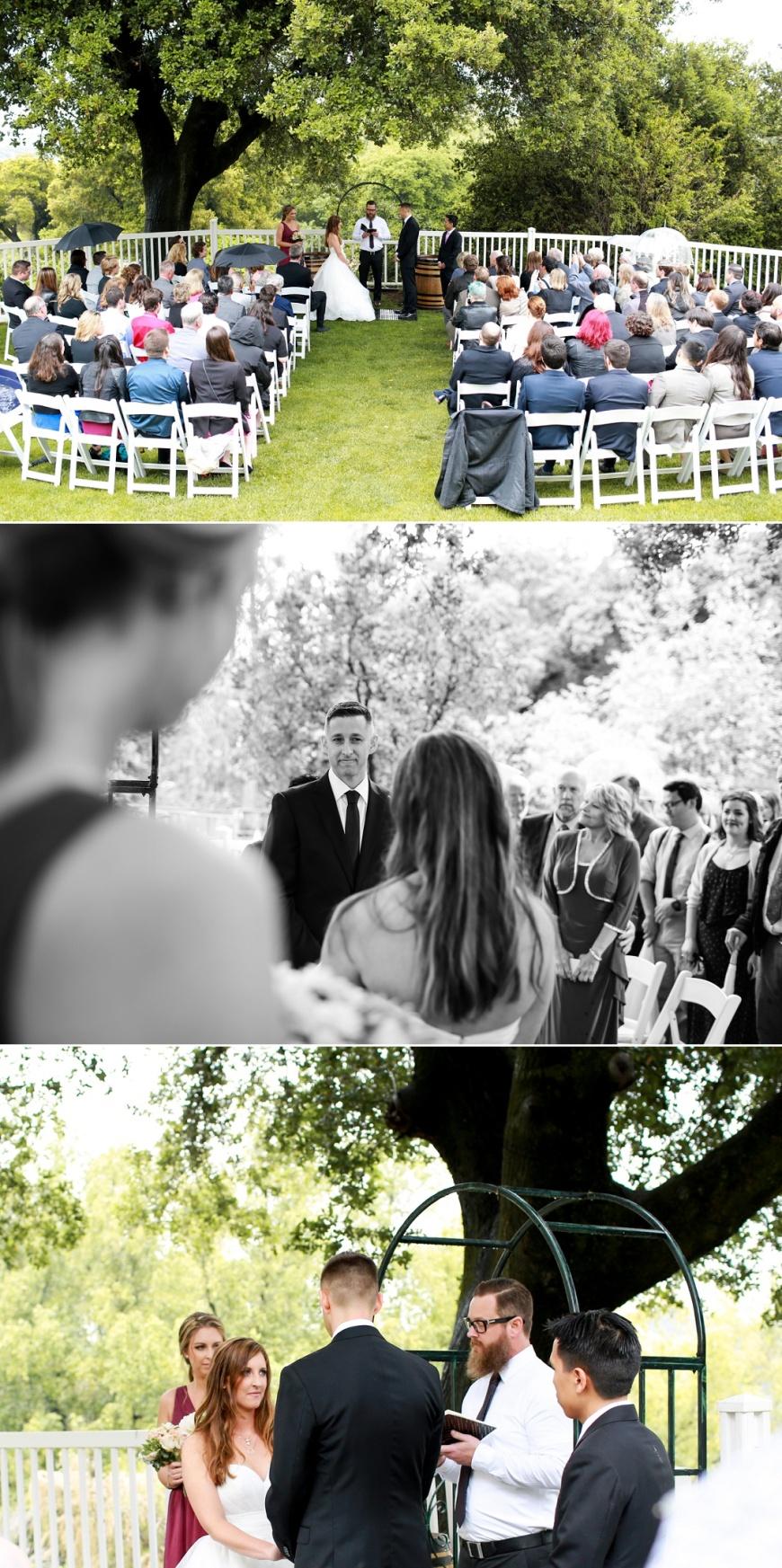 Picchetti-Winery-Wedding (1072).jpg