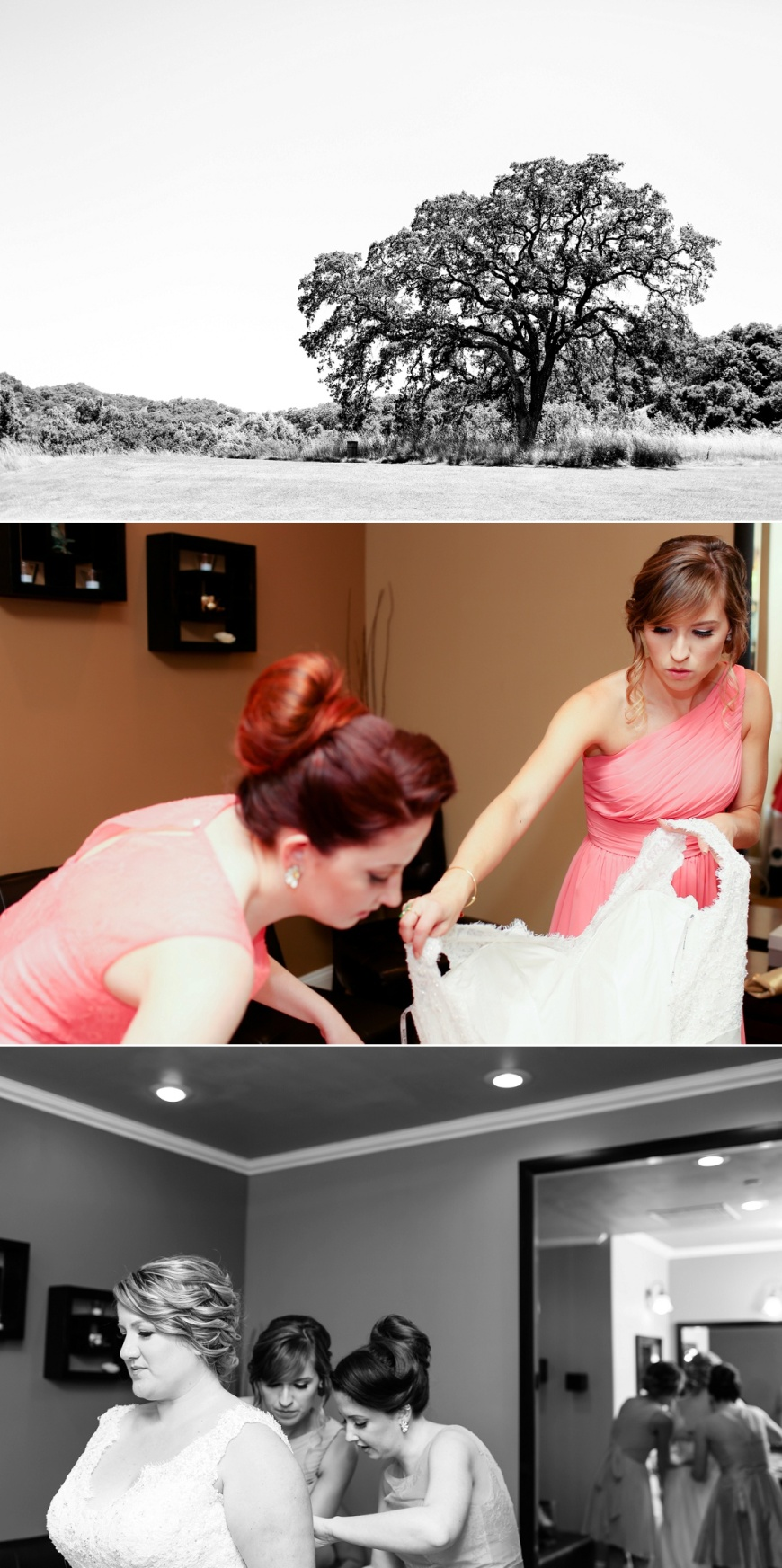 Cinnabar-Hills-Wedding-Jenna-Austin (1013).jpg