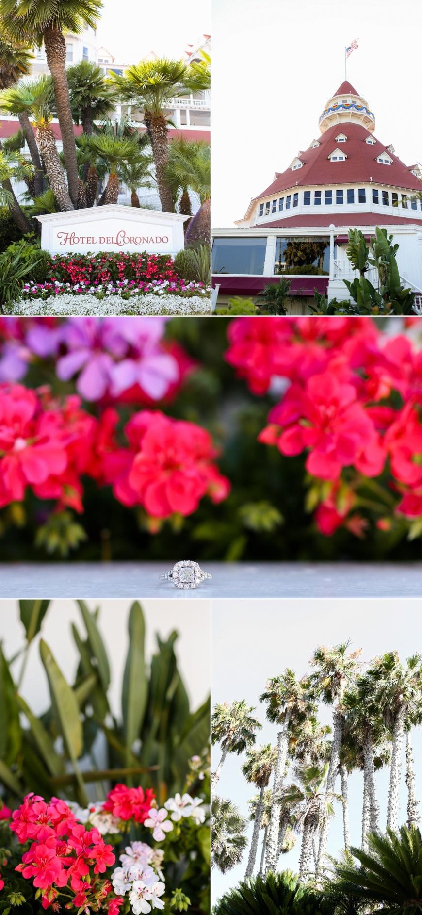 Hotel-Del-Coronado-Engagement (125).jpg