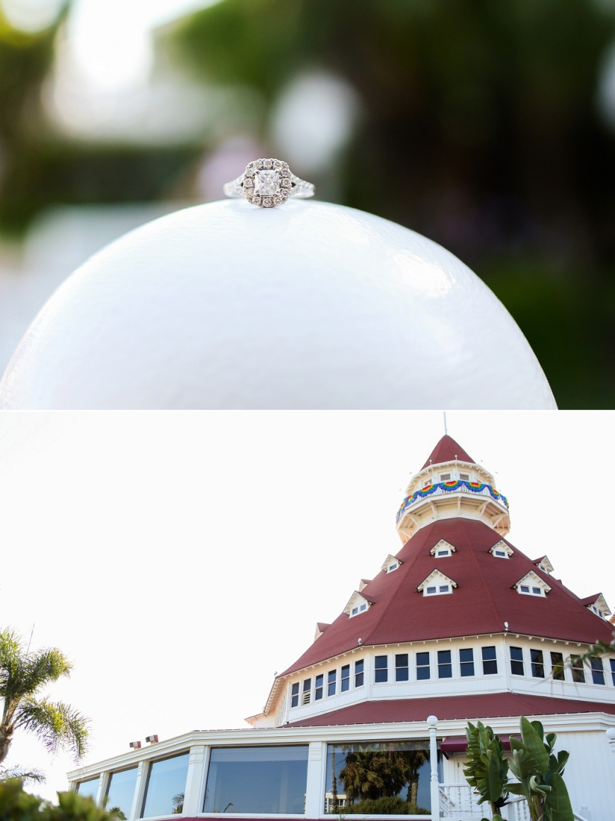 Hotel-Del-Coronado-Engagement (126).jpg