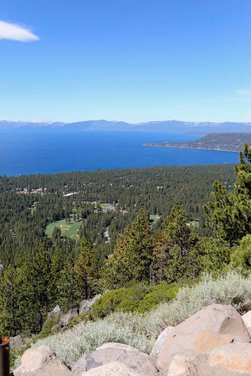 Incline-Village-Lake-Tahoe-Wedding (1002).jpg