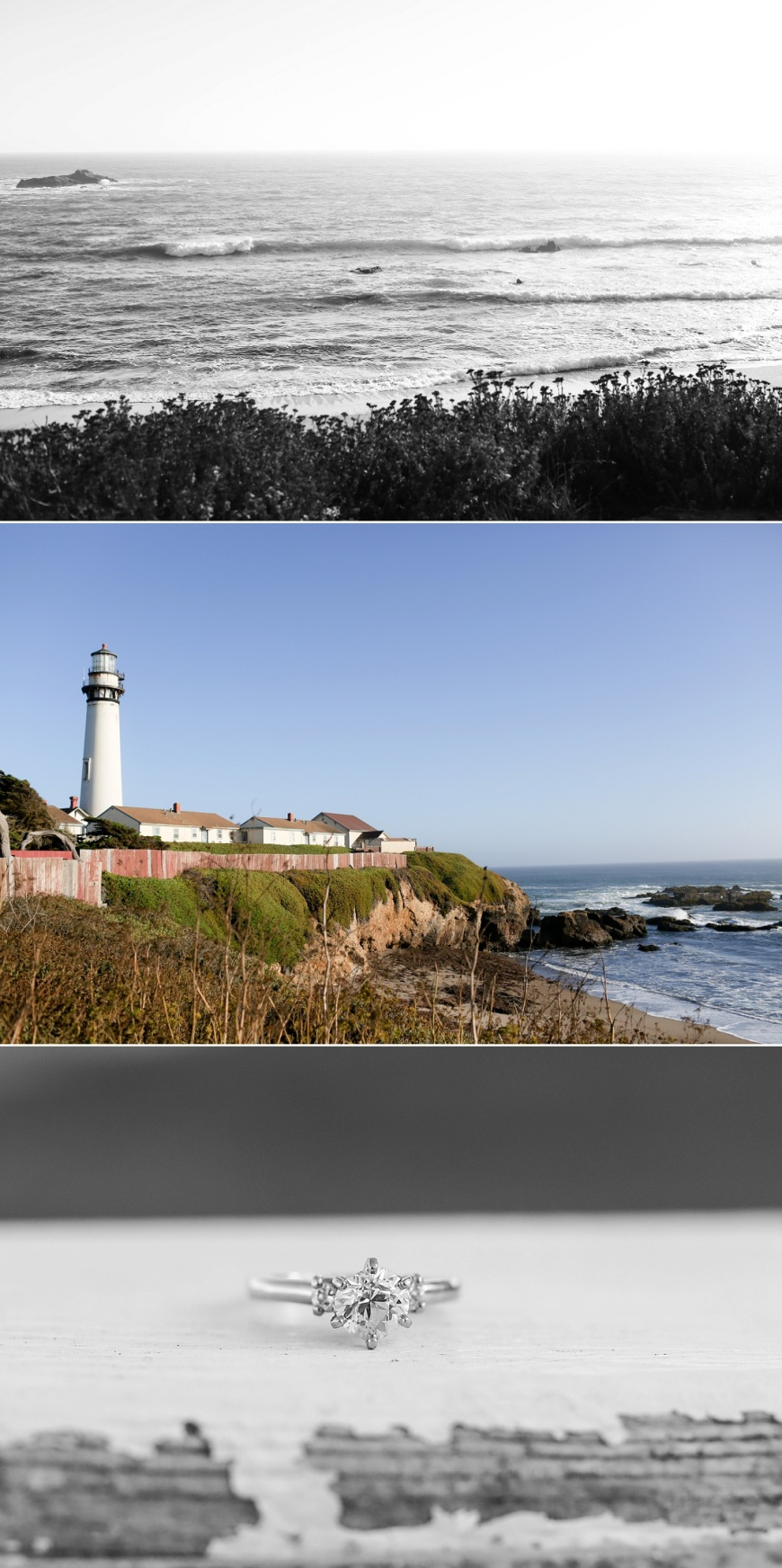 Pigeon Point Lighthouse Engagement_1017.jpg