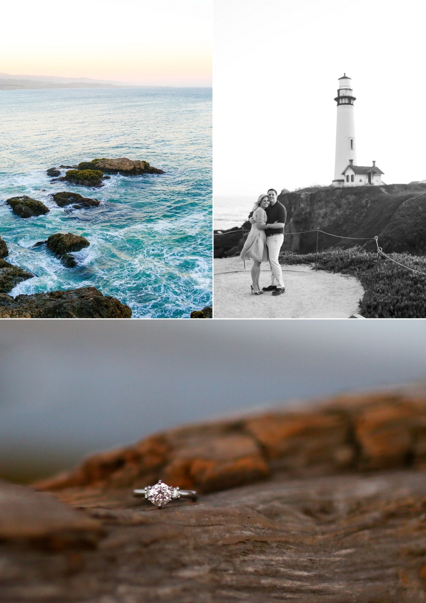 Pigeon Point Lighthouse Engagement_1027.jpg