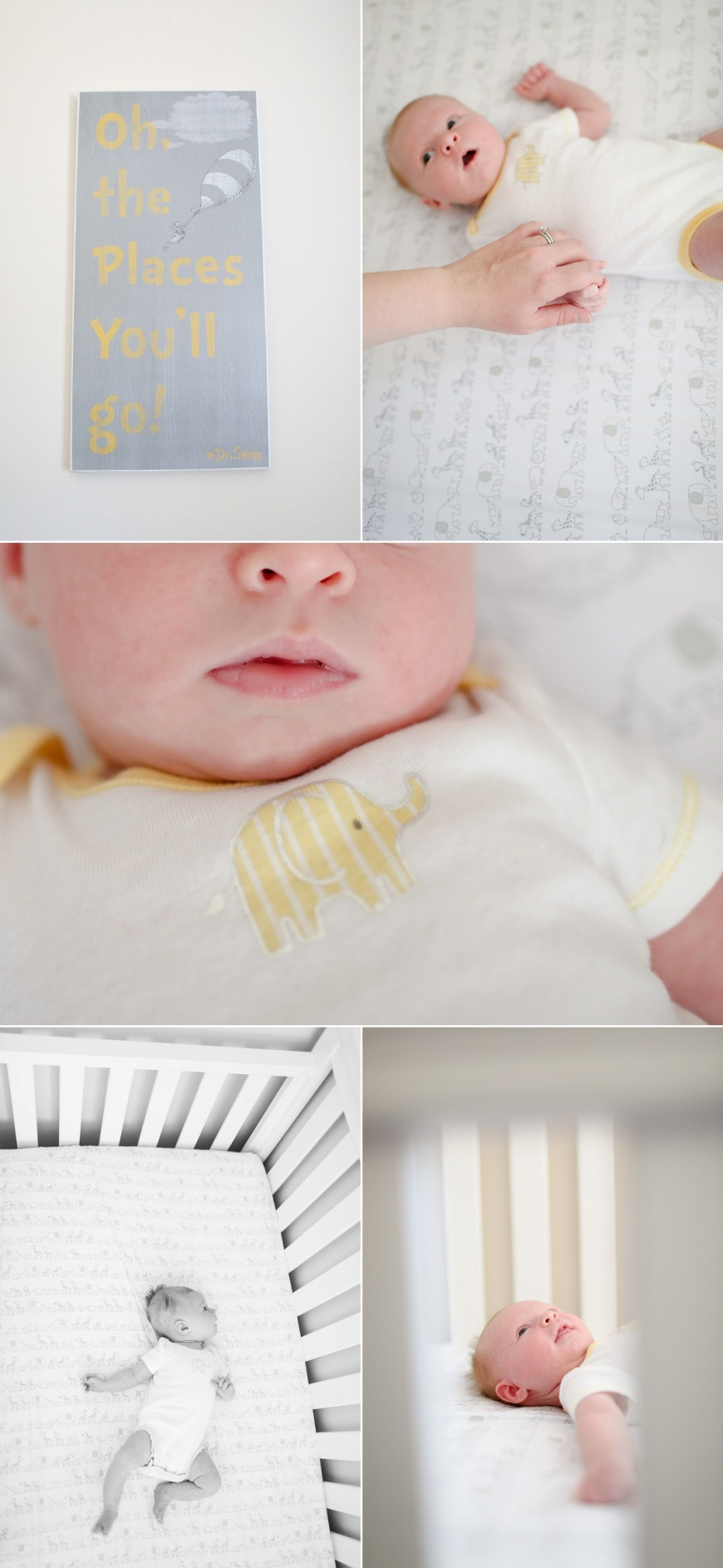Walnut-Creek-Newborn-Photography (1000).jpg