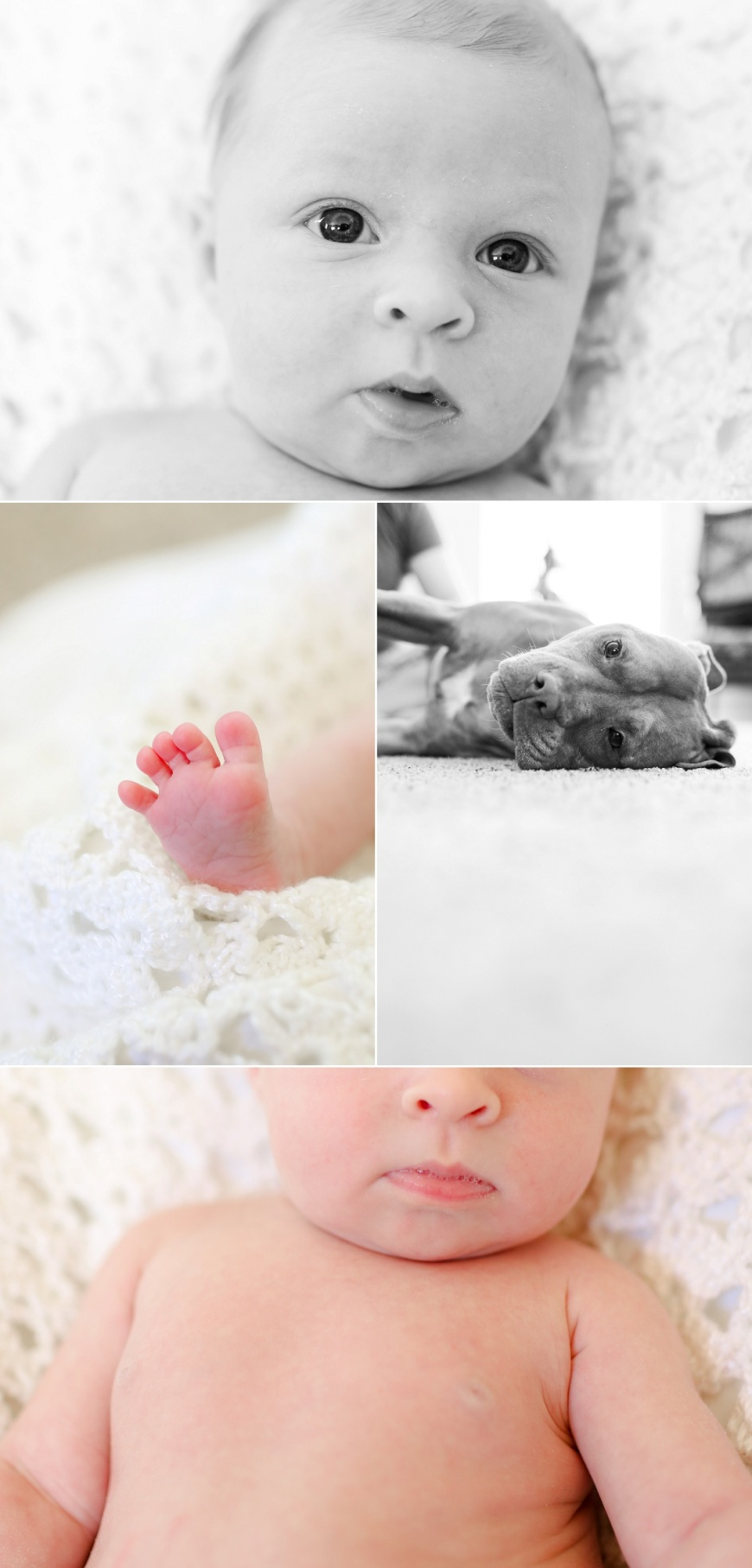 Walnut-Creek-Newborn-Photography (1007).jpg