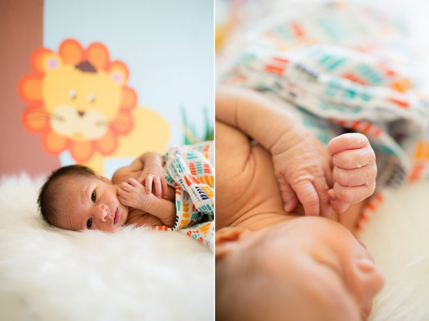 Cupertino Newborn Photographer_1020.jpg