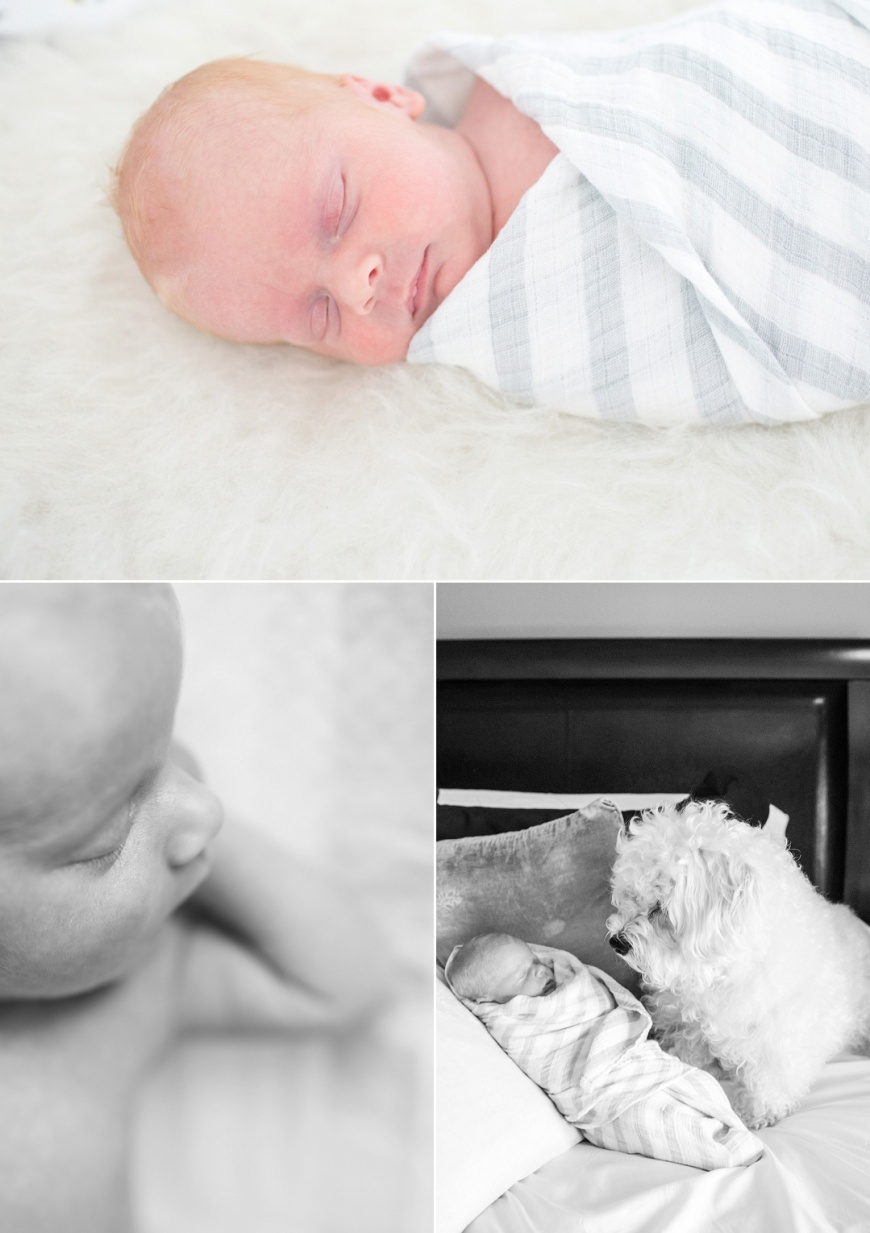 Los Gatos Newborn Photographer_1013.jpg