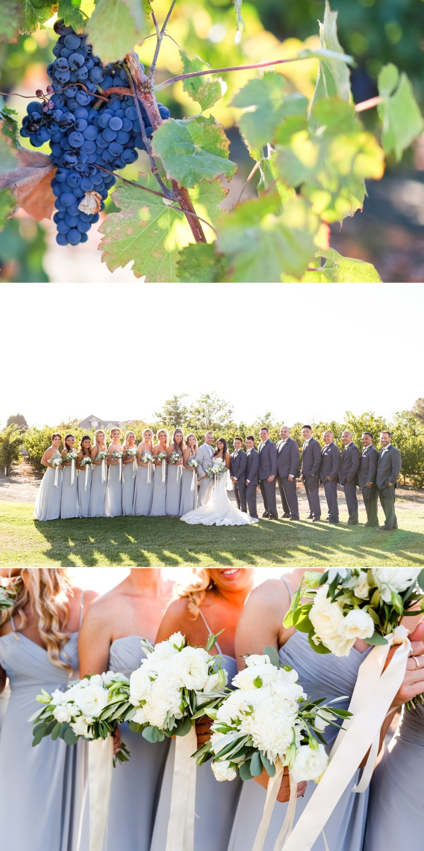 Newberry Estate Vineyards Wedding_1066.jpg
