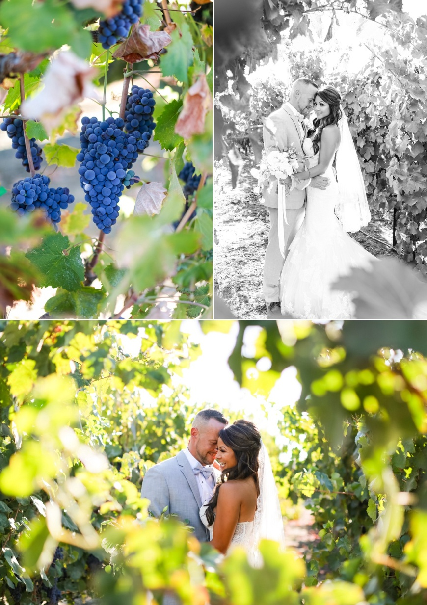 Newberry Estate Vineyards Wedding_1069.jpg