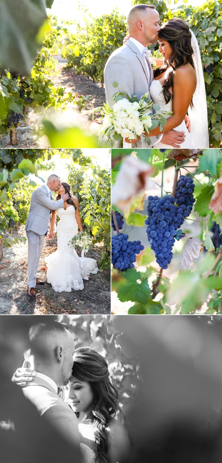 Newberry Estate Vineyards Wedding_1073.jpg