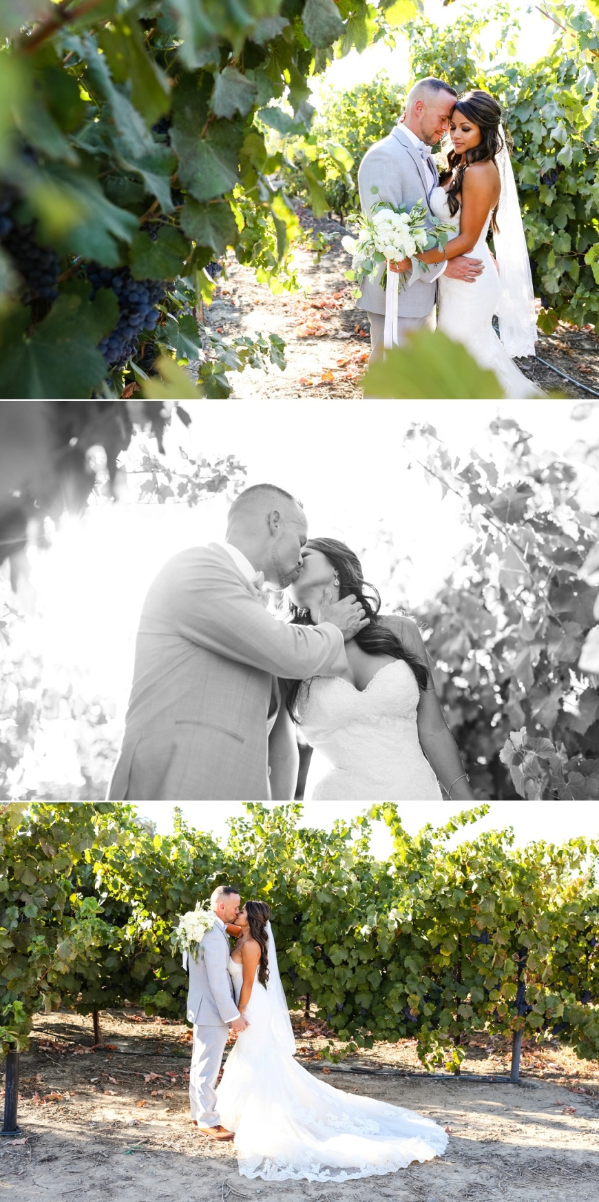 Newberry Estate Vineyards Wedding_1075.jpg