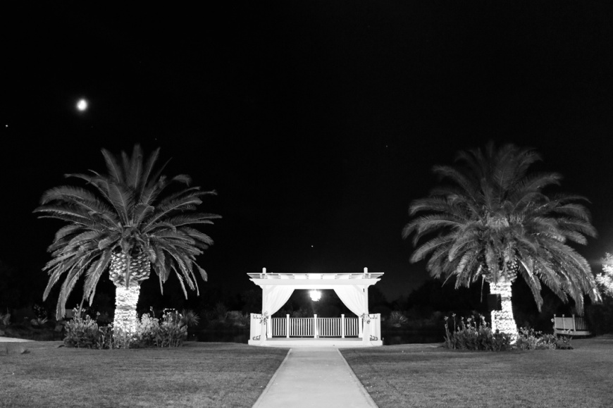 Newberry Estate Vineyards Wedding_1119.jpg