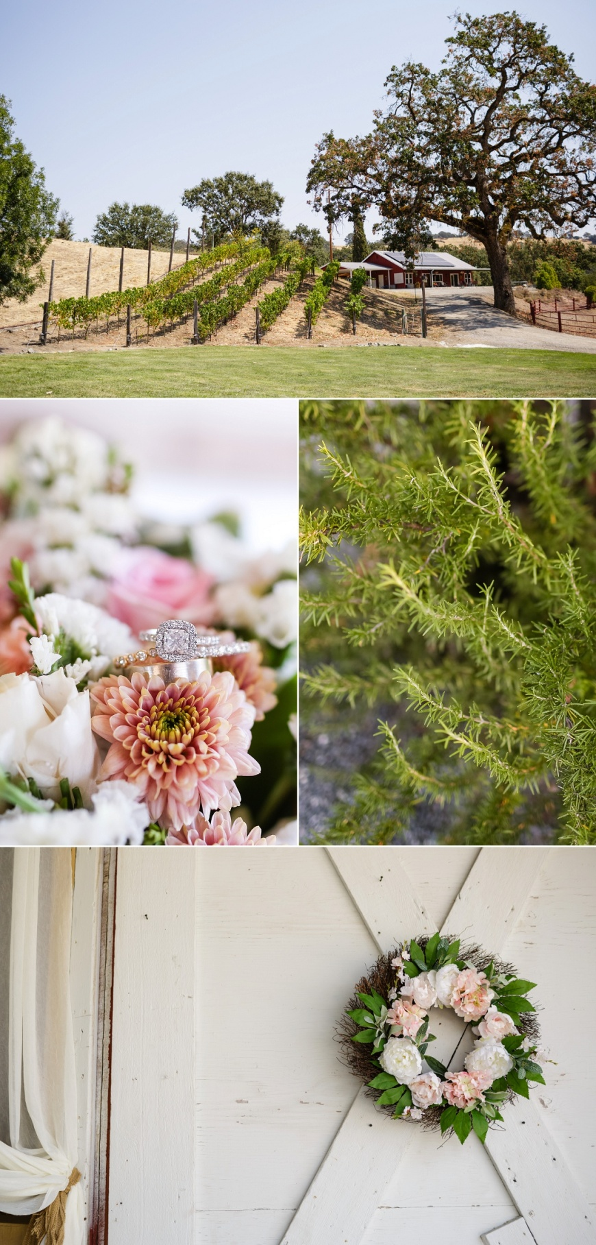 Red-Barn-Ranch-Wedding_1000.jpg