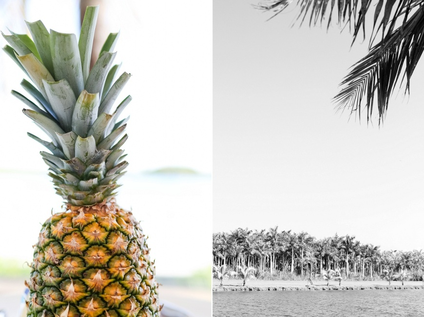 Royal-Palm-Island-Miami-Wedding-Photographer_1047.jpg