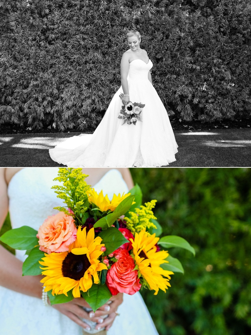 Monte-Sereno-Wedding-Photographer_1015.jpg