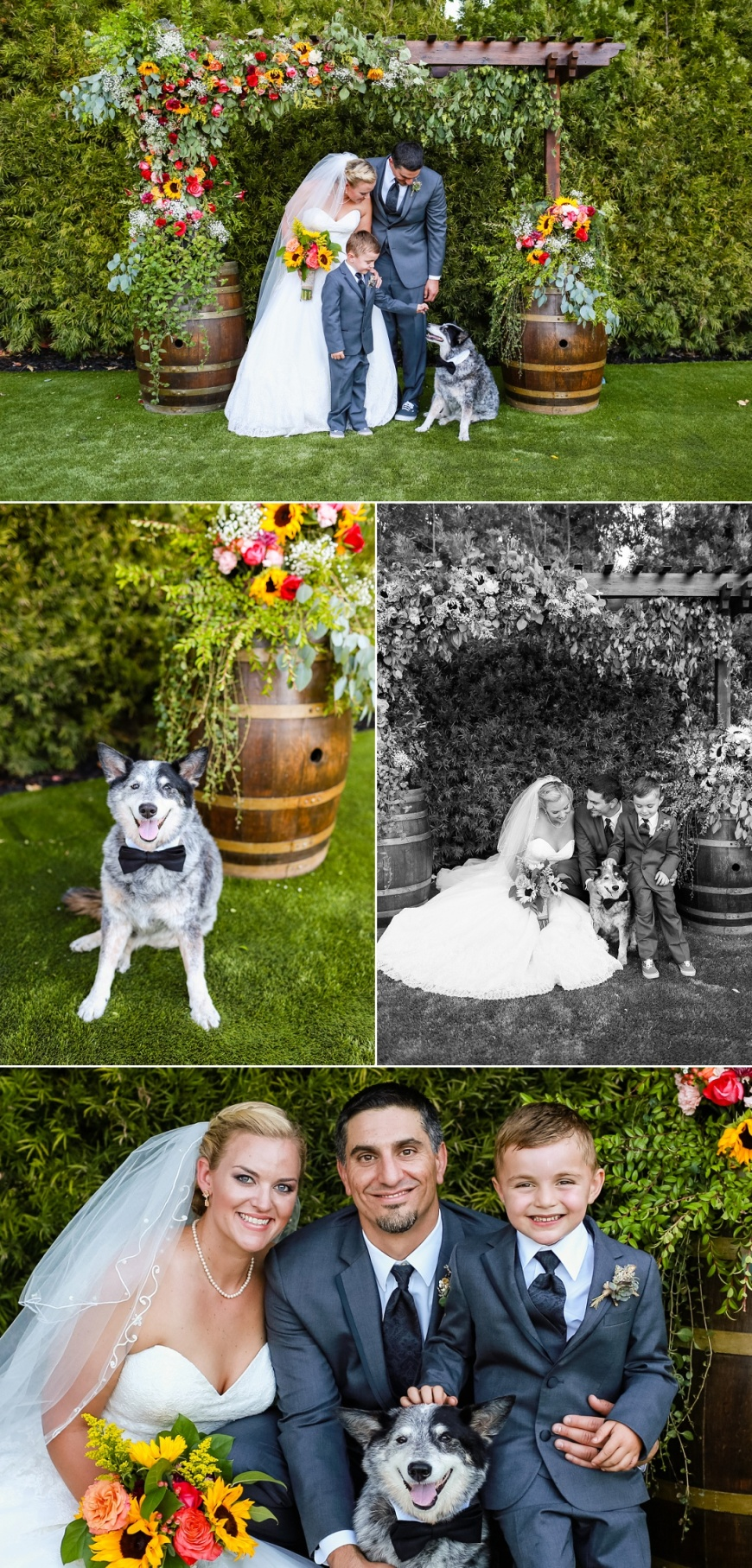 Monte-Sereno-Wedding-Photographer_1063.jpg