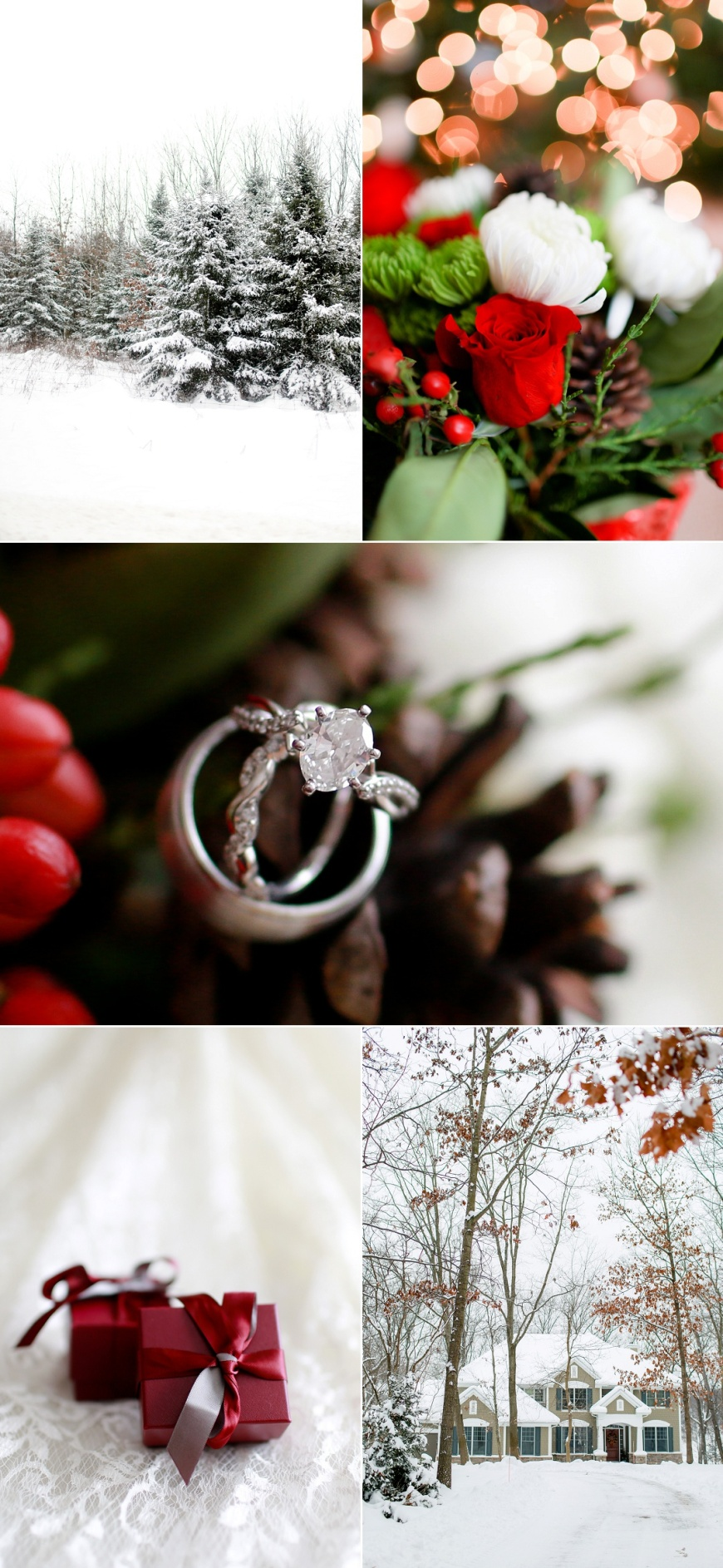 Kalamazoo-Winter-Wedding-Photographer_1000.jpg