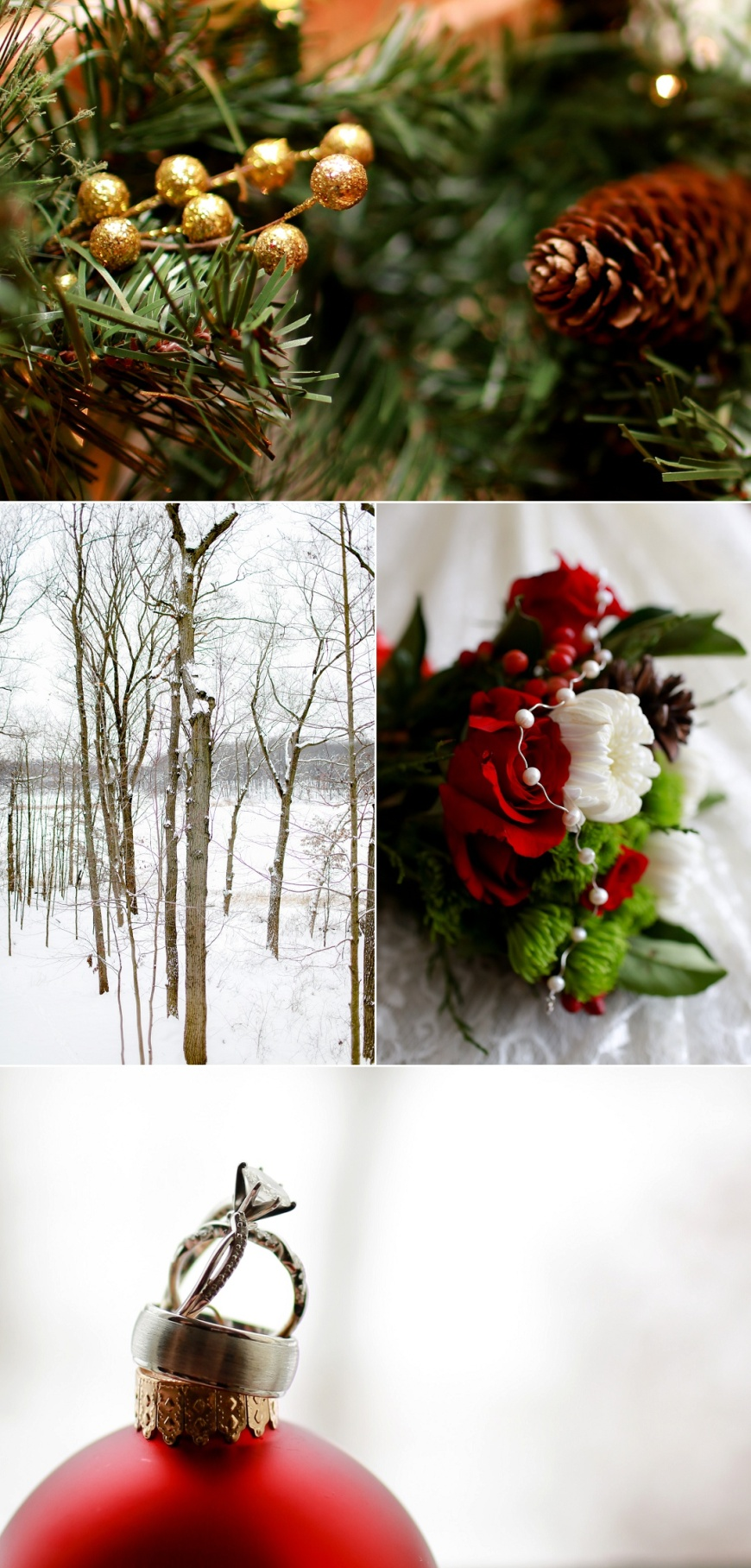 Kalamazoo-Winter-Wedding-Photographer_1001.jpg