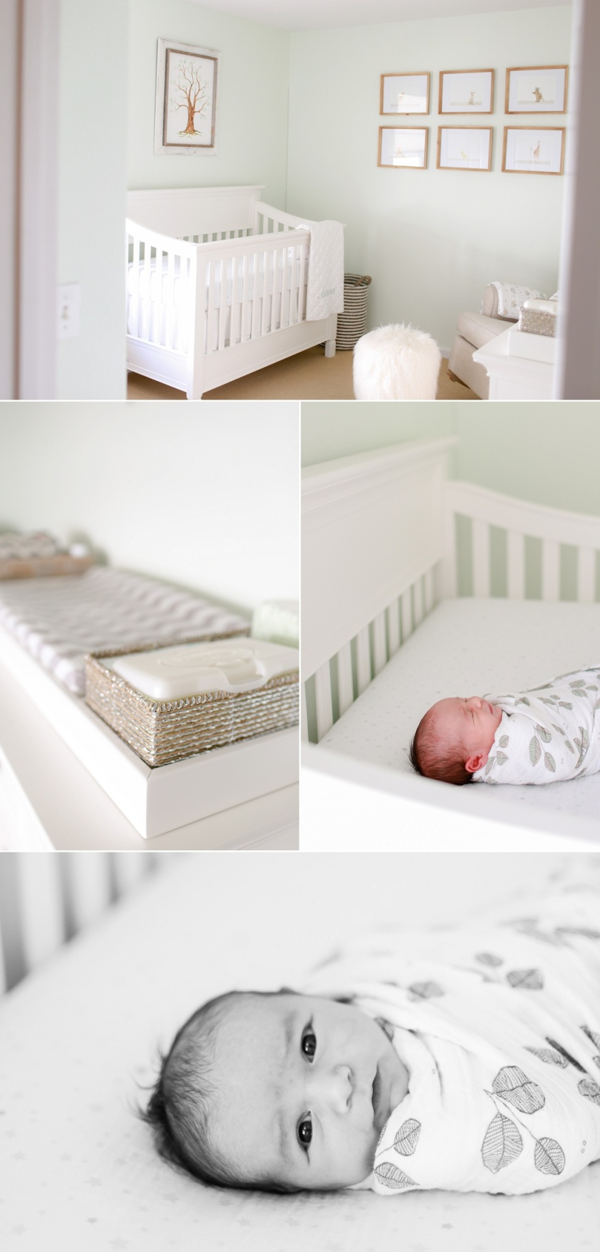 Novato-Newborn-Photographer_0100.jpg