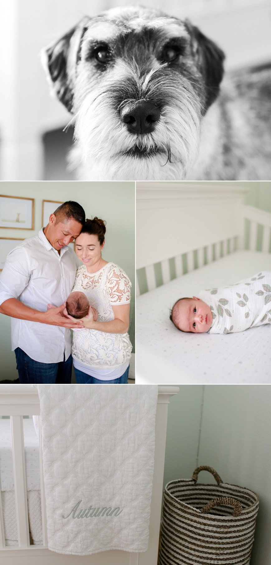 Novato-Newborn-Photographer_0104.jpg