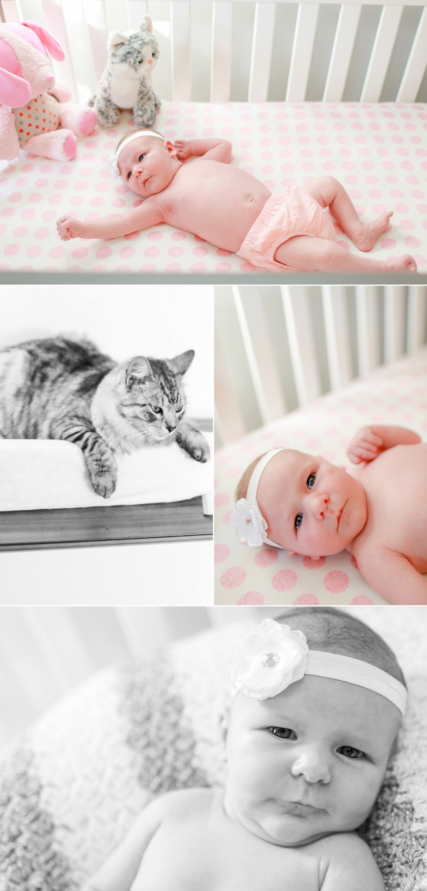 Pensacola-Newborn-Photographer_1003.jpg