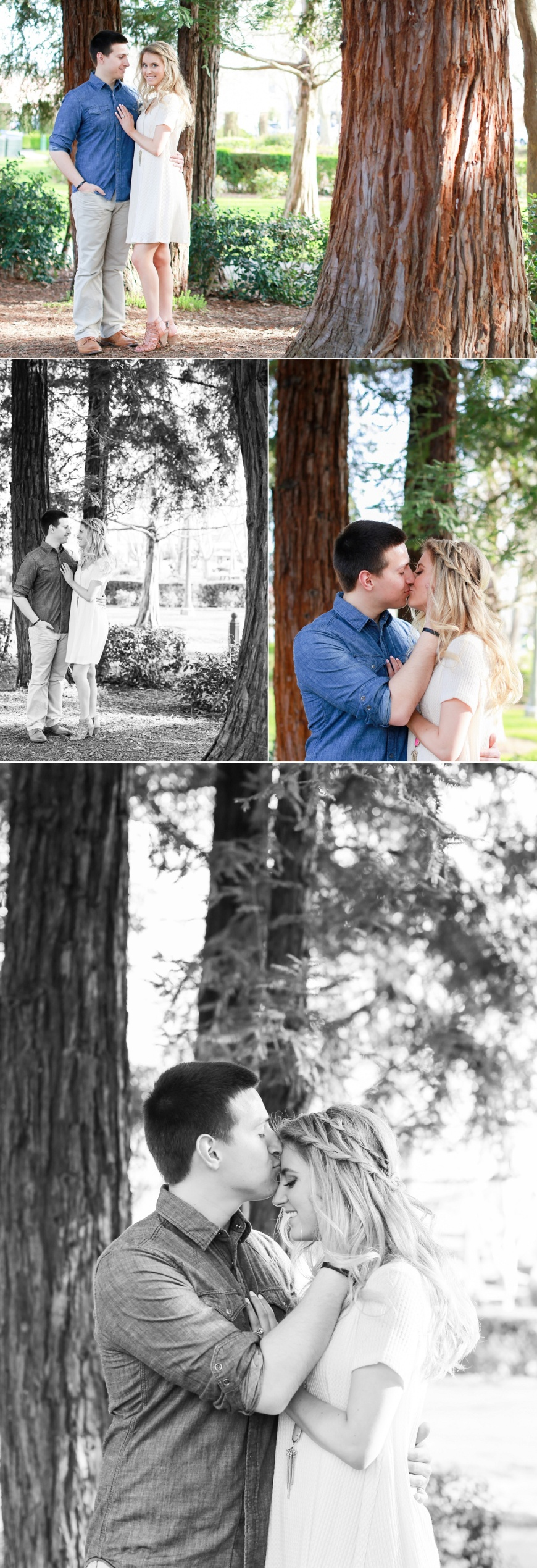 Sonoma-Engagement-Photographer_1031.jpg