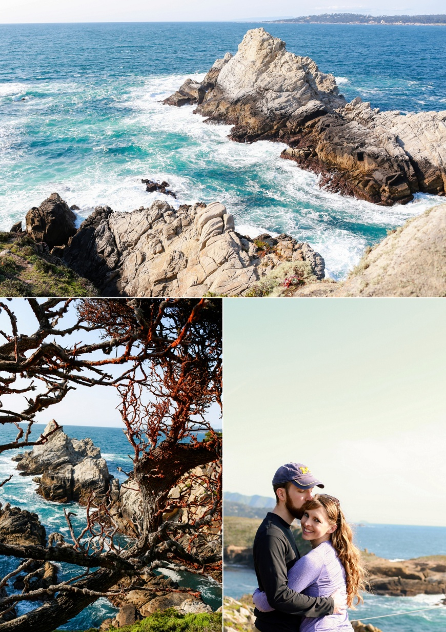Point-Lobos-Engagement_1020.jpg