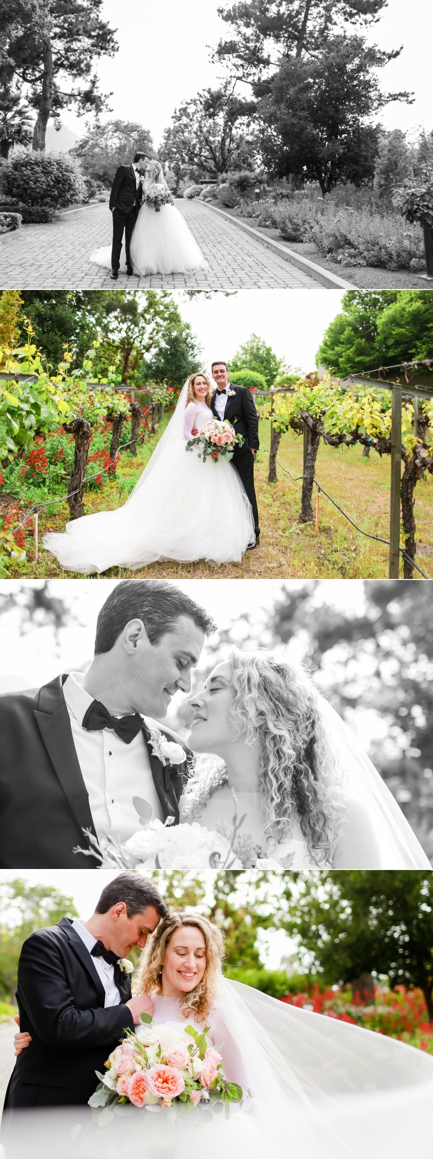 Folktale-Winery-Carmel-Wedding_1066.jpg