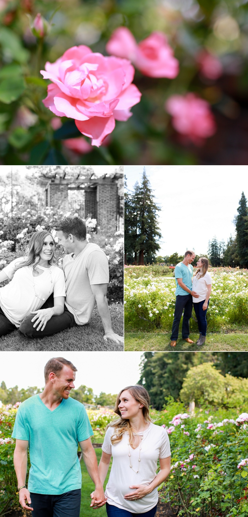 San-Jose-Rose-Garden-Maternity-Photographer_1001.jpg