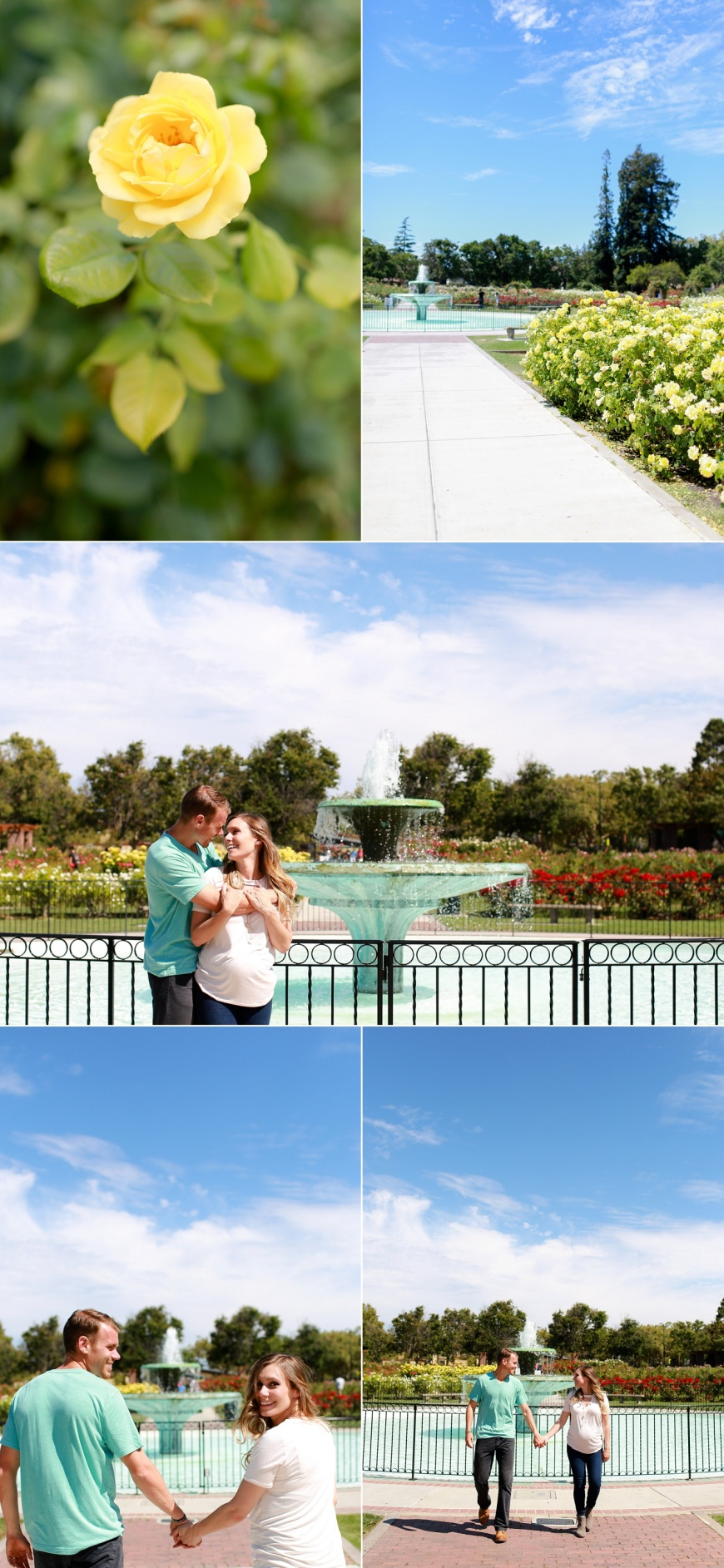 San-Jose-Rose-Garden-Maternity-Photographer_1013.jpg