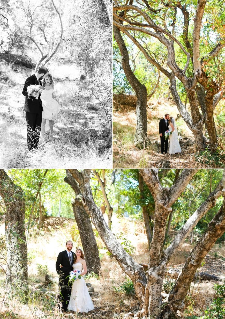 At-Home-Wedding-Saratoga-California_1042.jpg