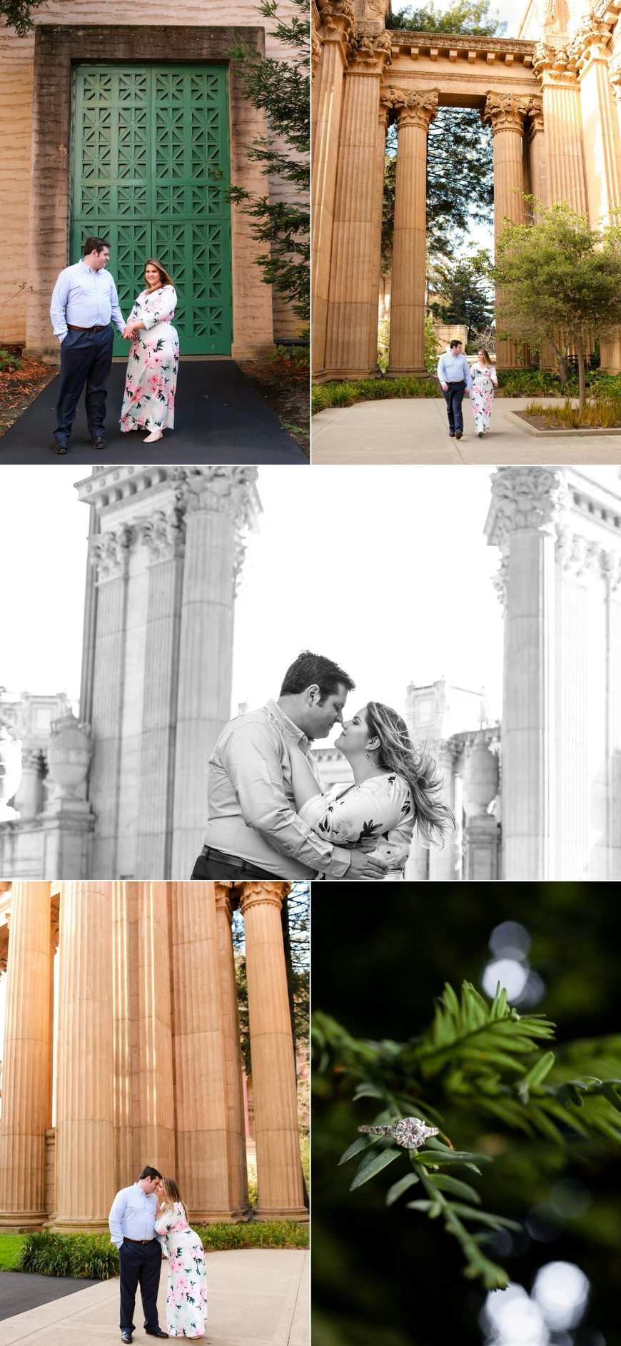 Palace-of-Fine-Arts-Engagement-Session_1010.jpg
