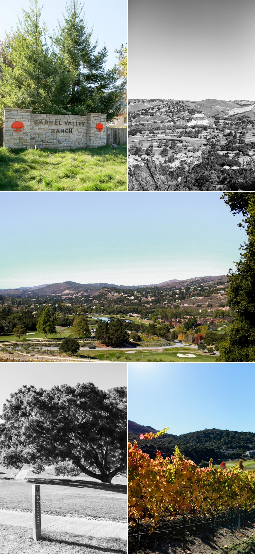 Carmel-Valley-Ranch-Proposal_1000.jpg