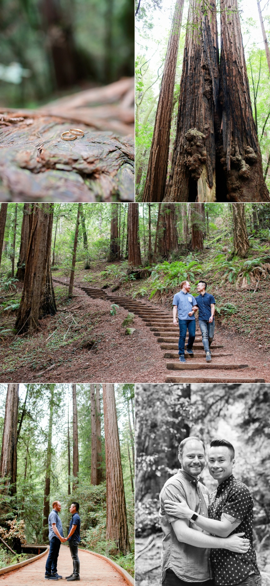 Muir-Woods-Engagement-Photographer_1000.jpg