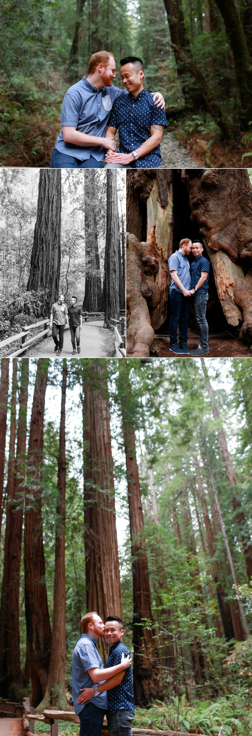 Muir-Woods-Engagement-Photographer_1007.jpg