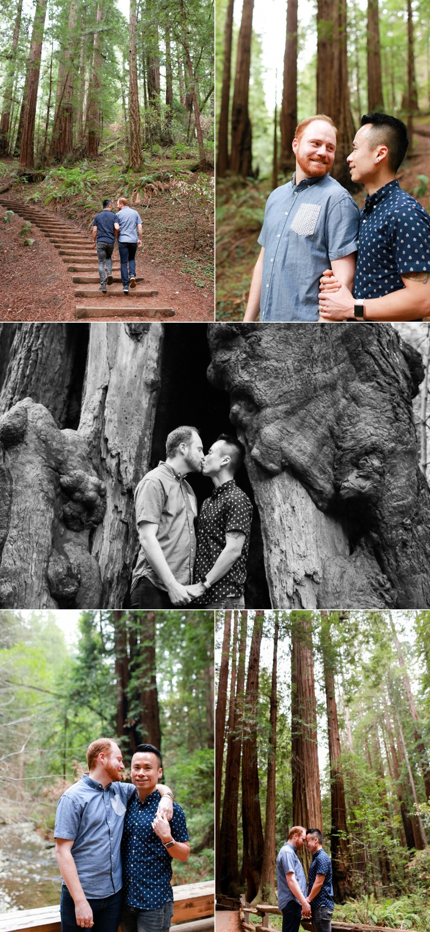 Muir-Woods-Engagement-Photographer_1008.jpg