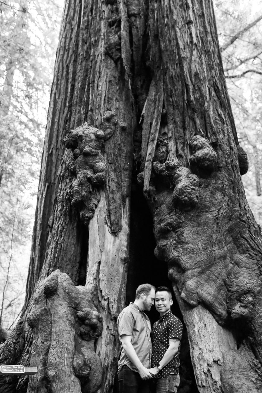 Muir-Woods-Engagement-Photographer_1009.jpg