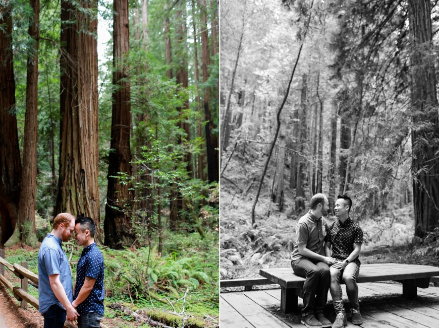 Muir-Woods-Engagement-Photographer_1015.jpg