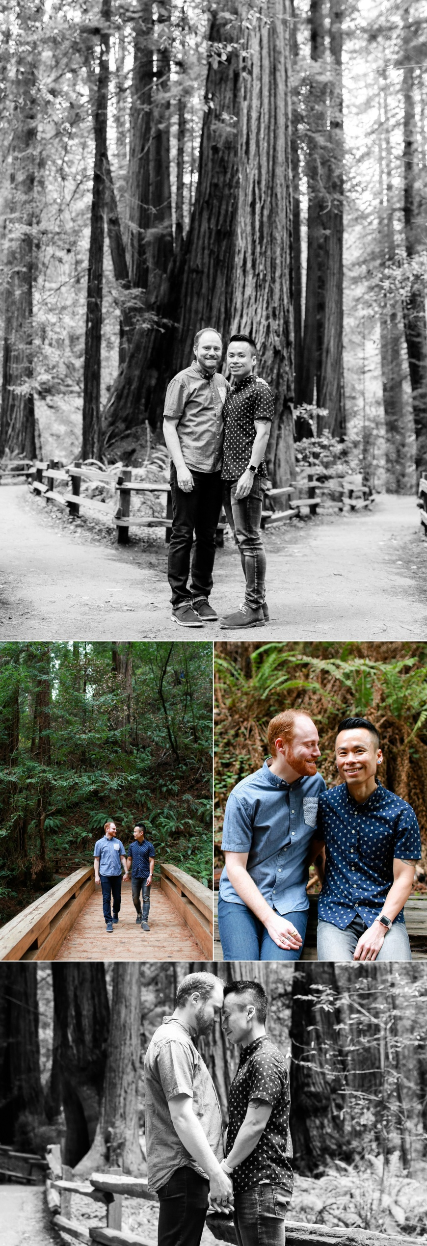 Muir-Woods-Engagement-Photographer_1019.jpg