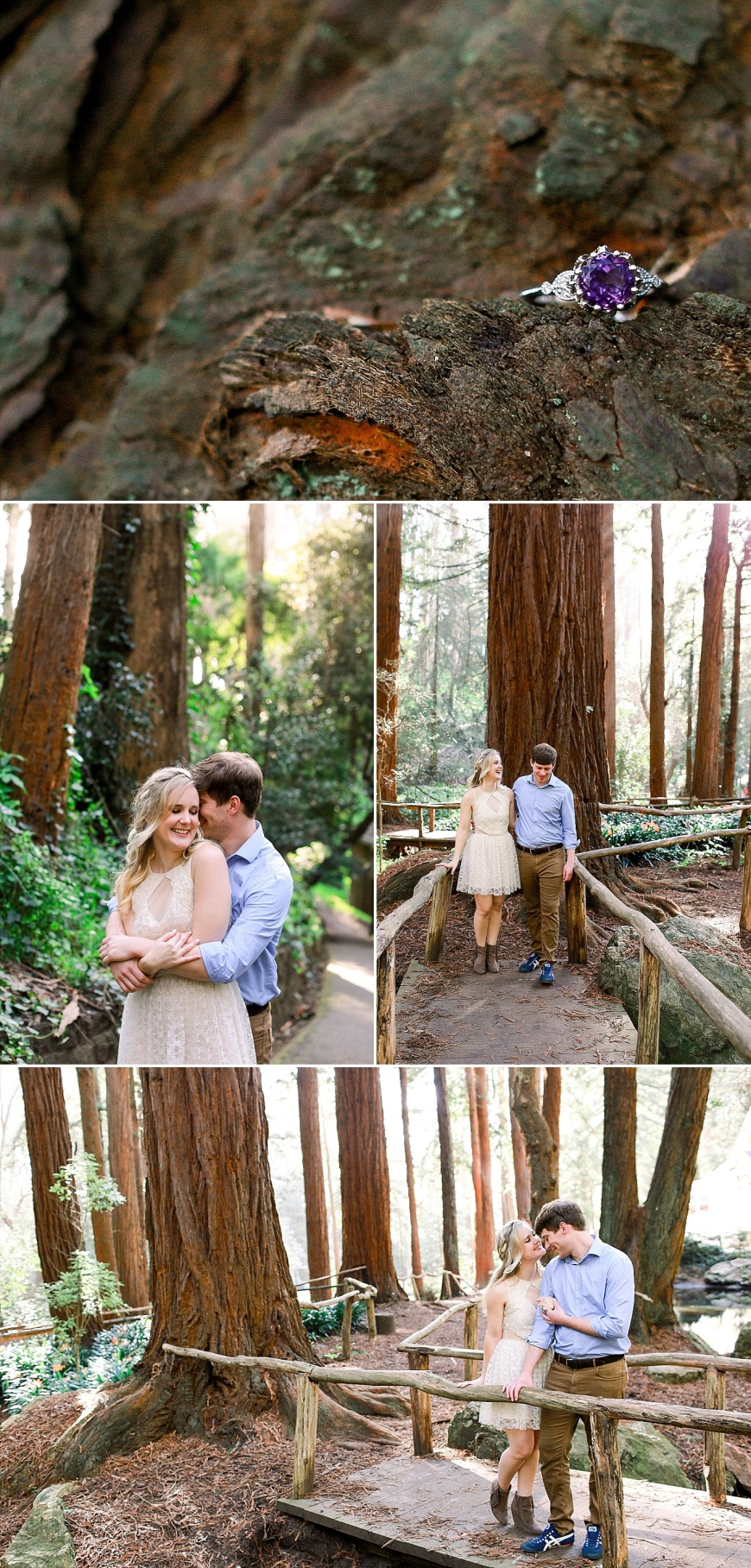 San-Francisco-Engagement-Photographer-Stern-Grove-Fort-Funston_1003.jpg