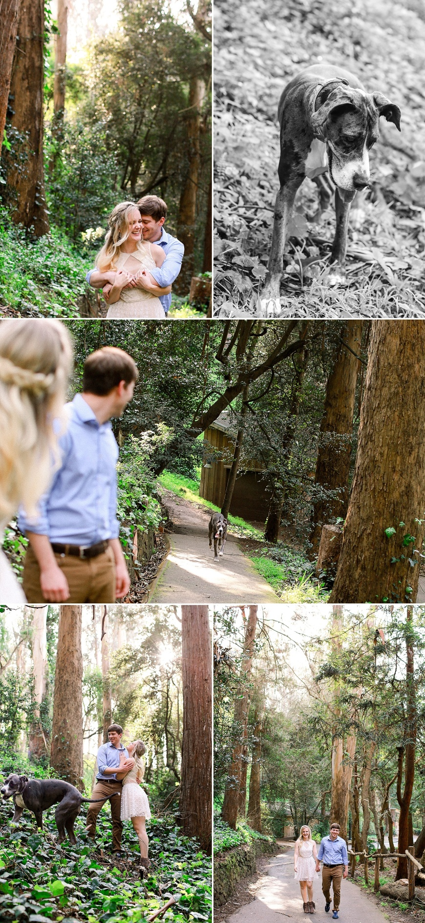 San-Francisco-Engagement-Photographer-Stern-Grove-Fort-Funston_1009.jpg