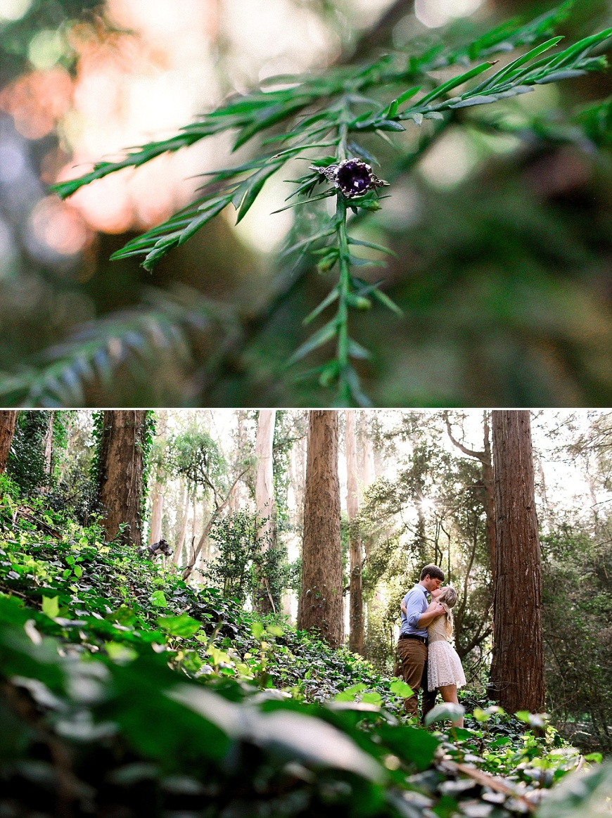 San-Francisco-Engagement-Photographer-Stern-Grove-Fort-Funston_1012.jpg