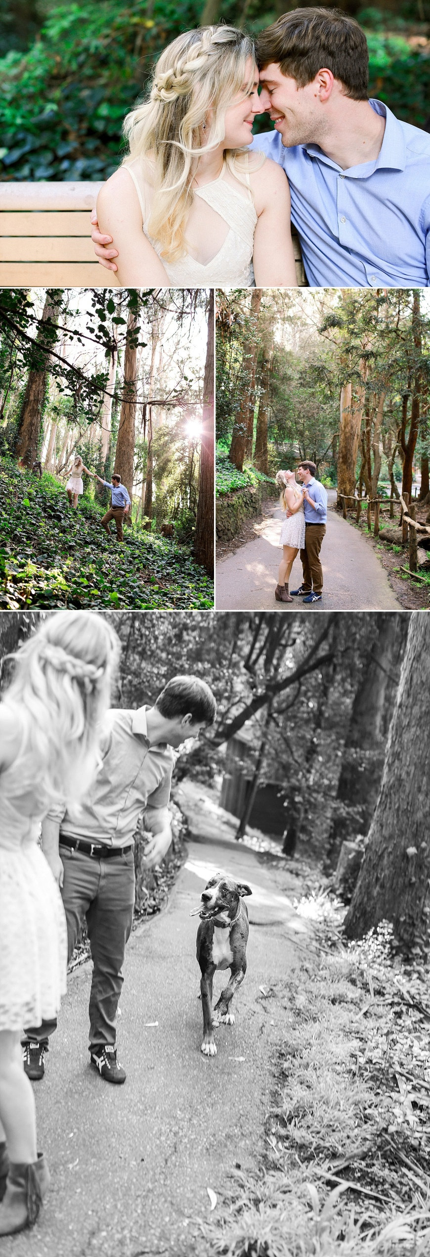 San-Francisco-Engagement-Photographer-Stern-Grove-Fort-Funston_1013.jpg