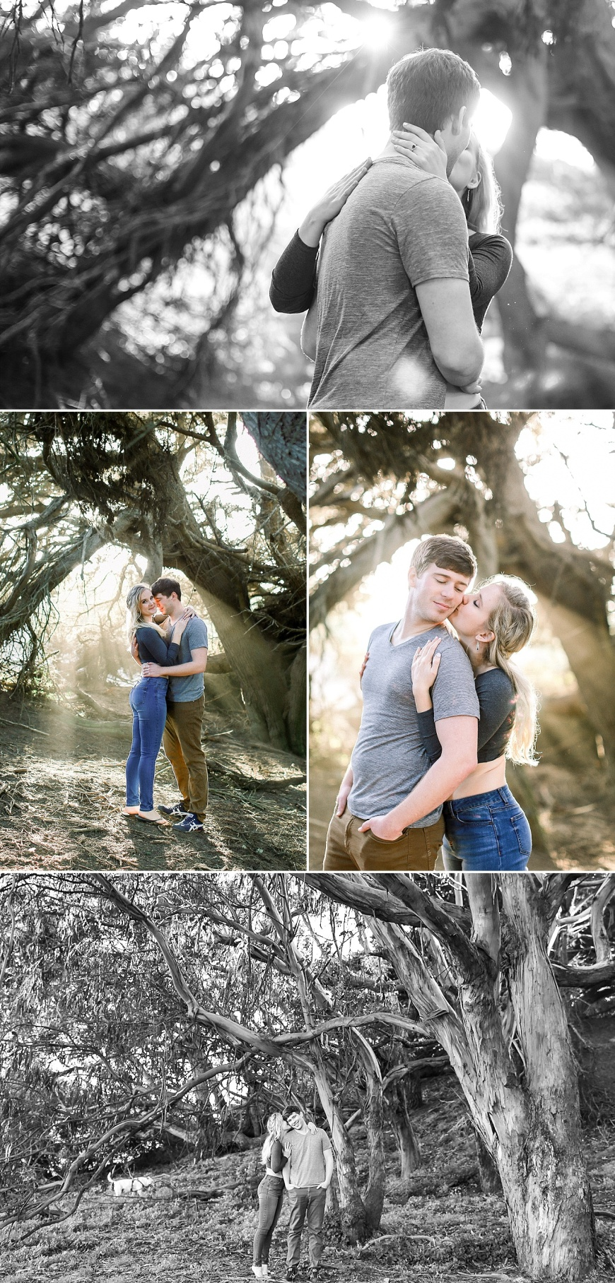 San-Francisco-Engagement-Photographer-Stern-Grove-Fort-Funston_1021.jpg