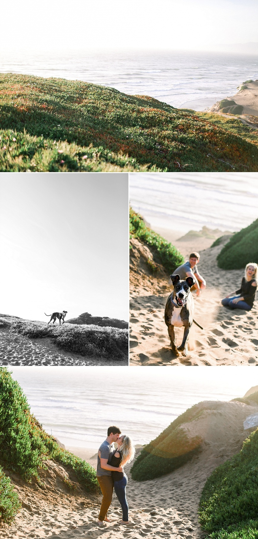San-Francisco-Engagement-Photographer-Stern-Grove-Fort-Funston_1023.jpg